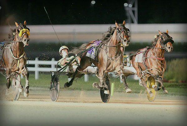 Hoosier Park Racing & Casino